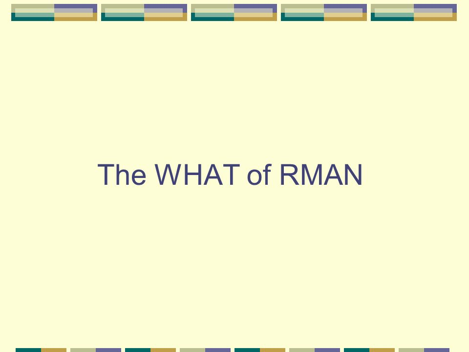 The WHAT of RMAN