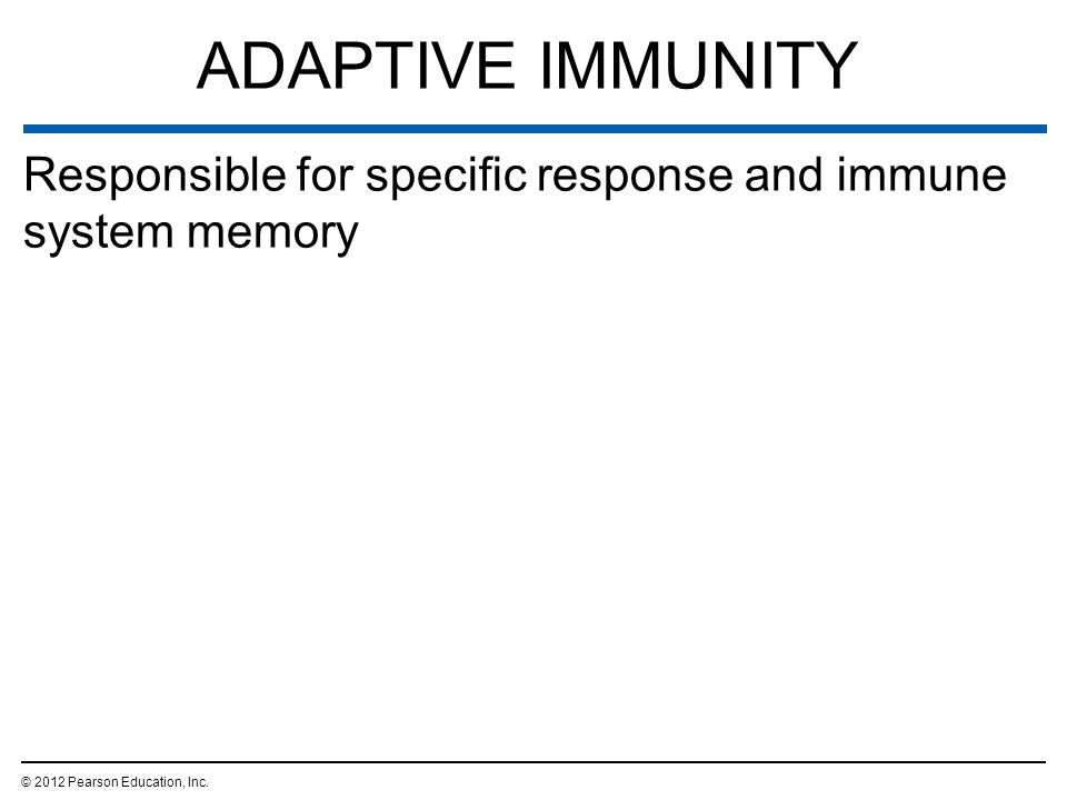 ADAPTIVE IMMUNITY Responsible for specific response and immune system memory. © 2012 Pearson Education, Inc.