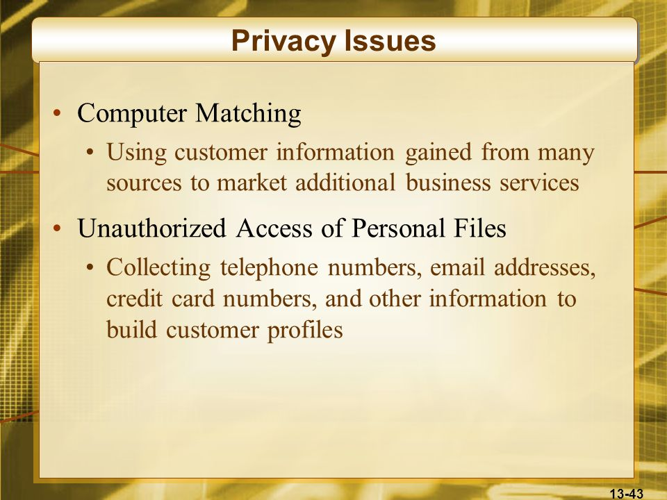 Privacy Issues Computer Matching Unauthorized Access of Personal Files