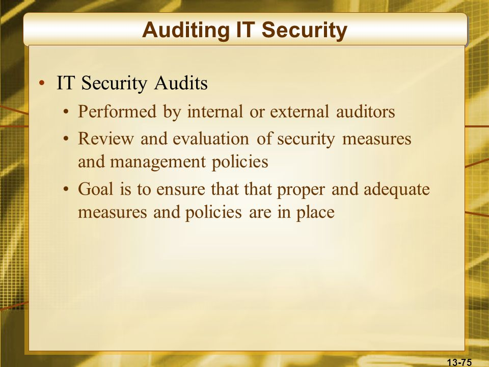 Auditing IT Security IT Security Audits