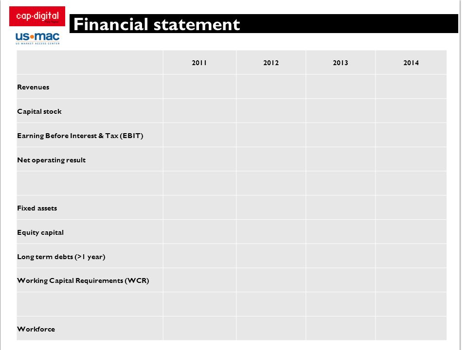 Financial statement Revenues Capital stock
