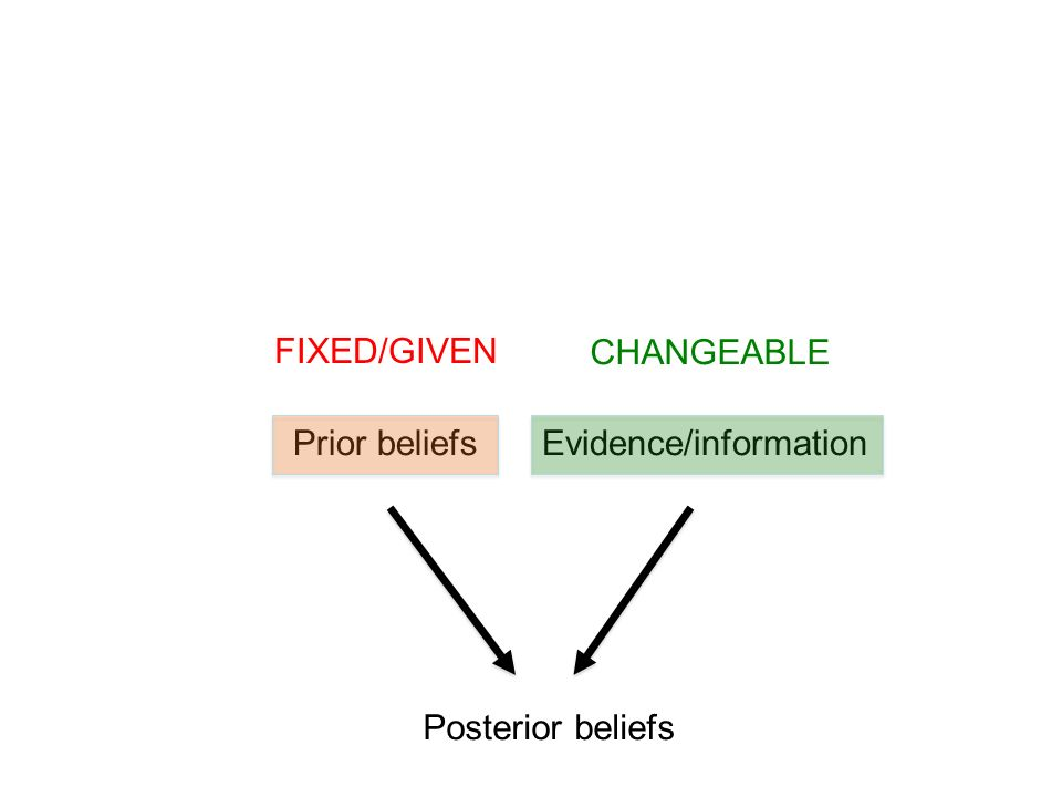 FIXED/GIVEN CHANGEABLE Prior beliefs Evidence/information Posterior beliefs
