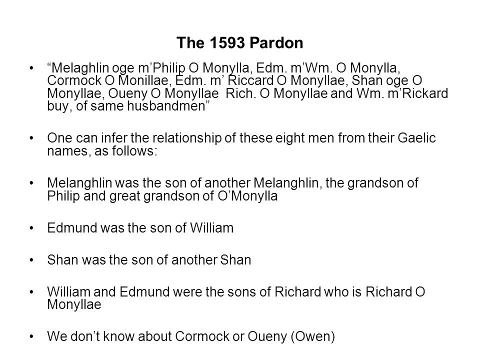 The 1593 Pardon