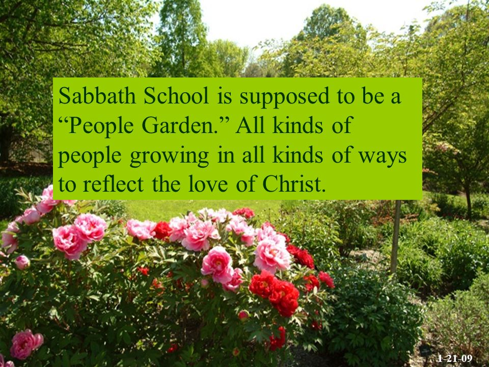 Sabbath School is supposed to be a People Garden