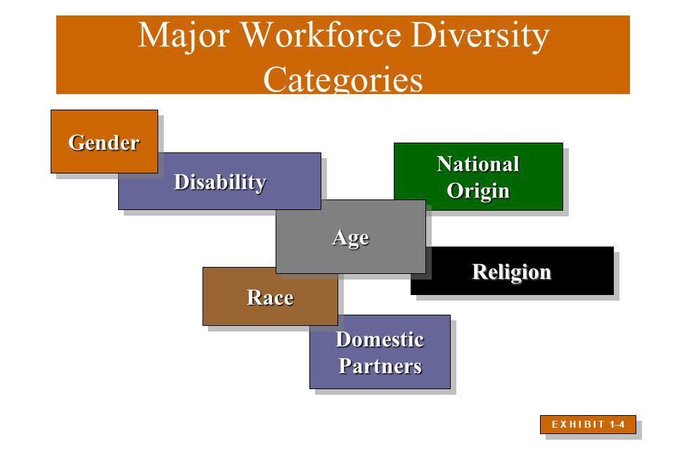 Major Workforce Diversity Categories