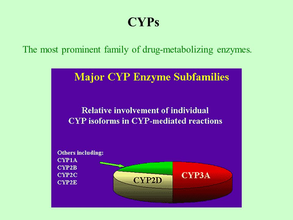 CYPs The most prominent family of drug-metabolizing enzymes.