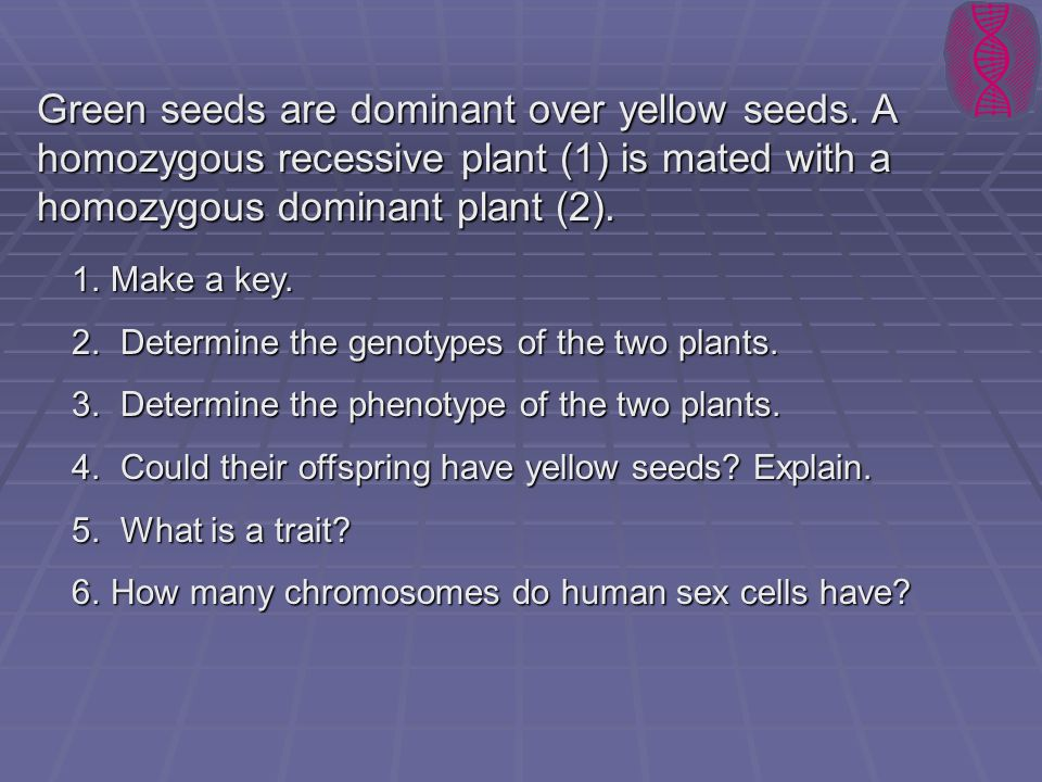 Green seeds are dominant over yellow seeds