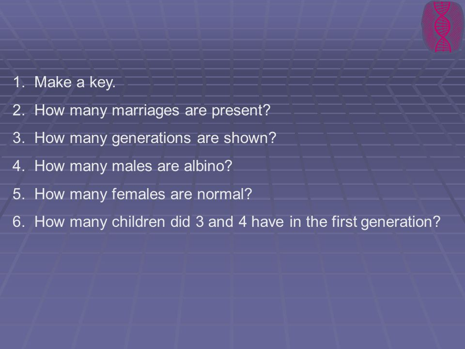 Make a key. How many marriages are present How many generations are shown How many males are albino