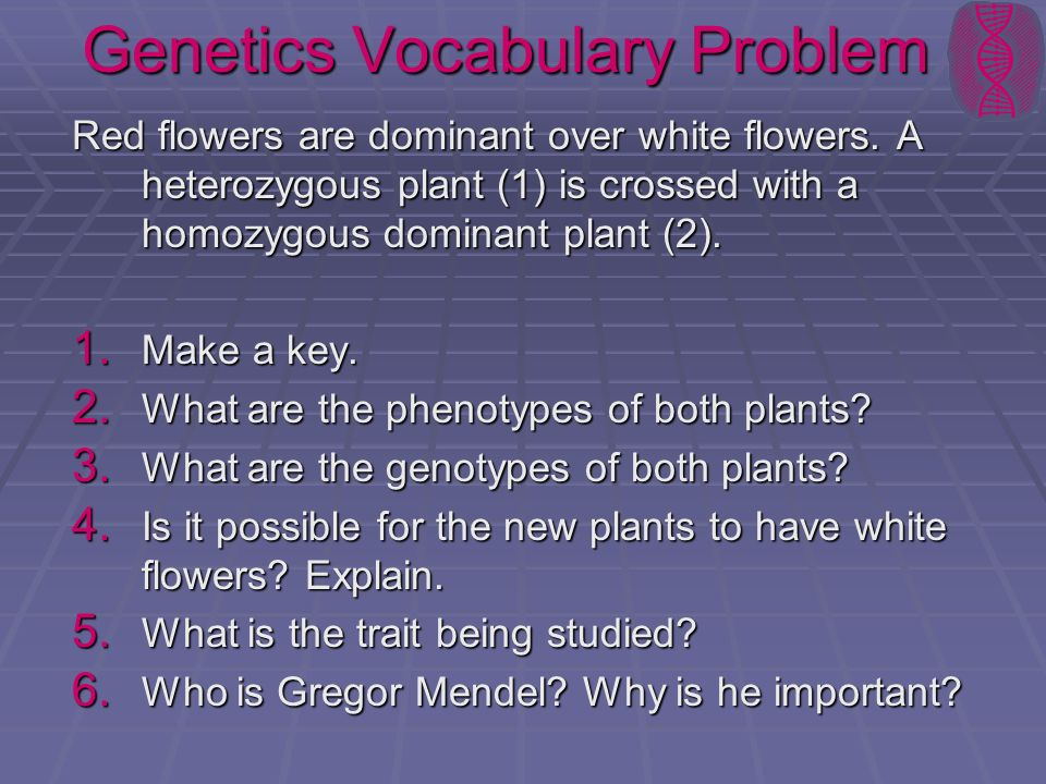 Genetics Vocabulary Problem