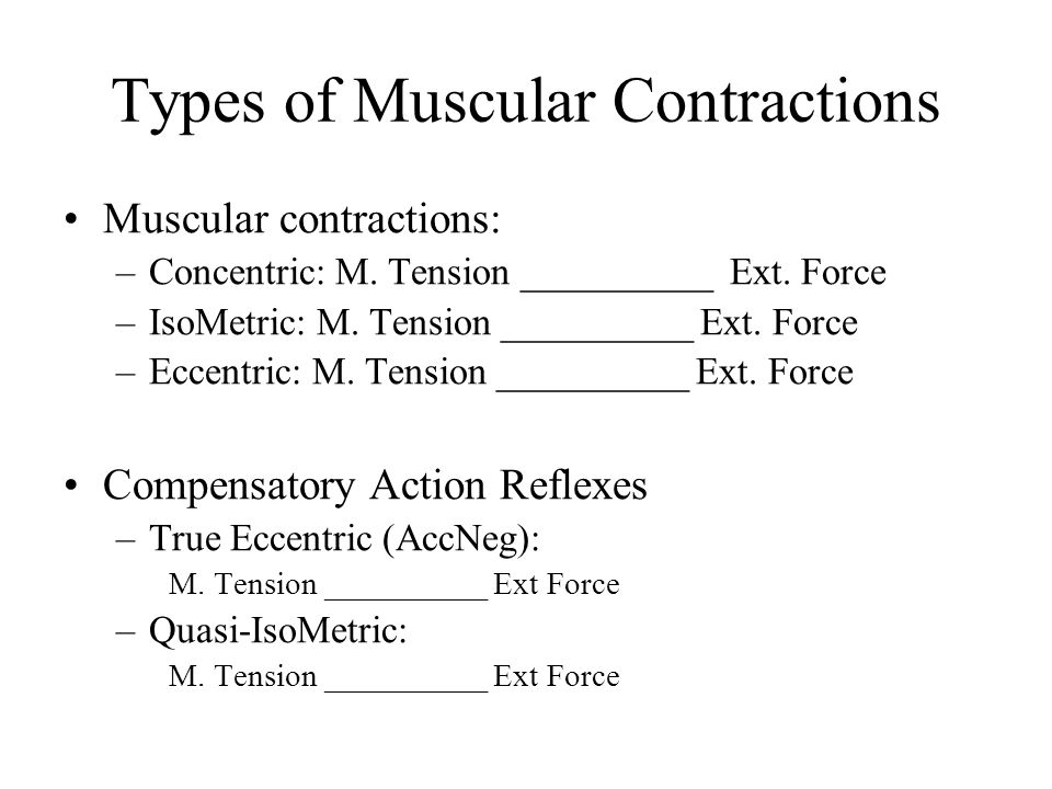 Types of Muscular Contractions