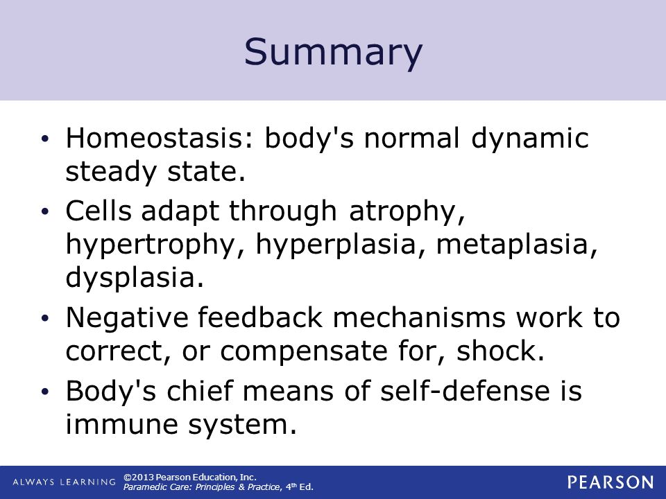 Summary Homeostasis: body s normal dynamic steady state.