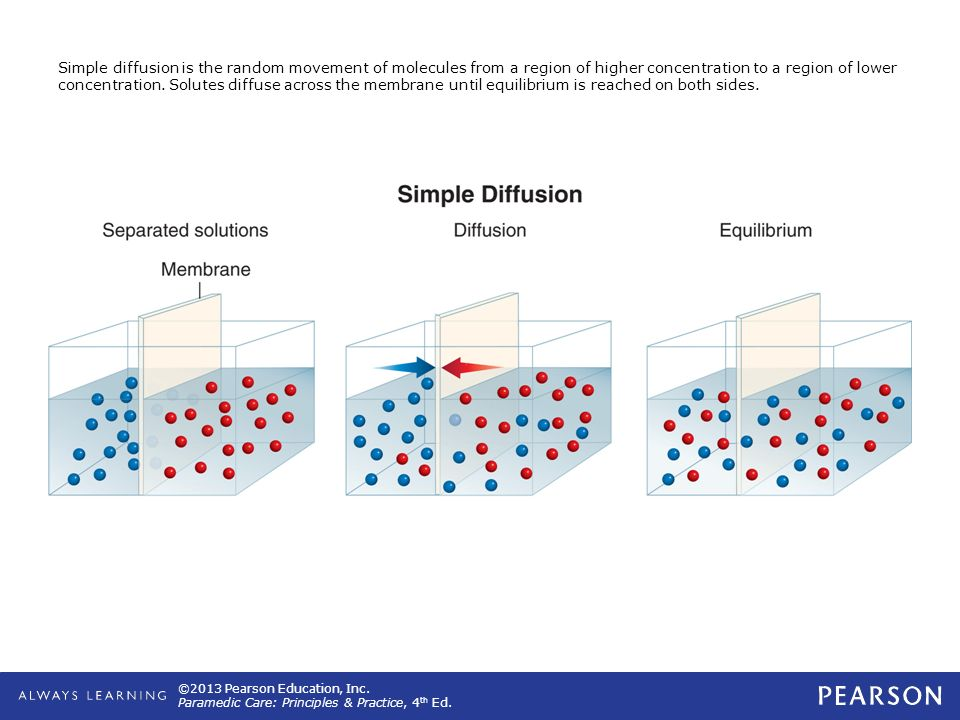 Simple diffusion is the random movement of molecules from a region of higher concentration to a region of lower concentration.