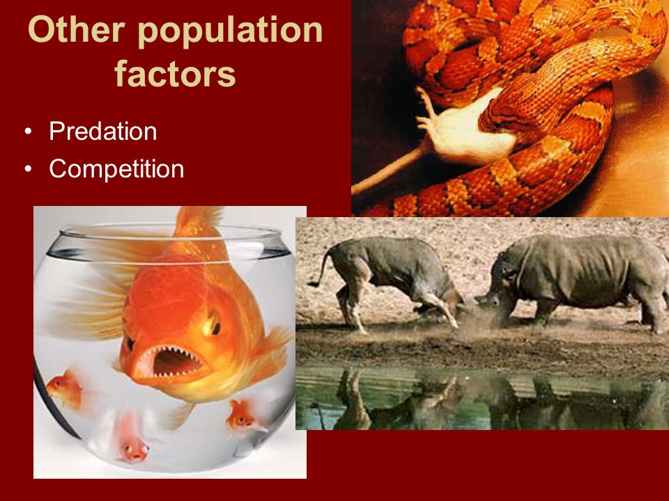 Other population factors