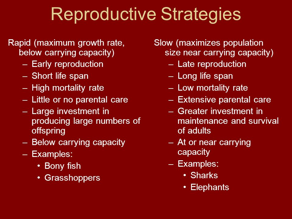 Reproductive Strategies