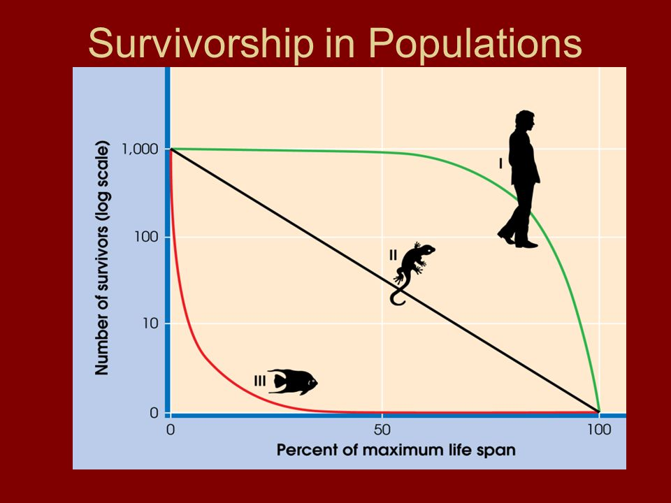 Survivorship in Populations