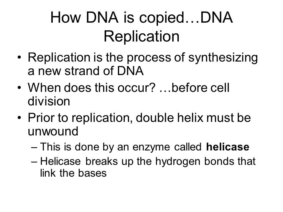 How DNA is copied…DNA Replication