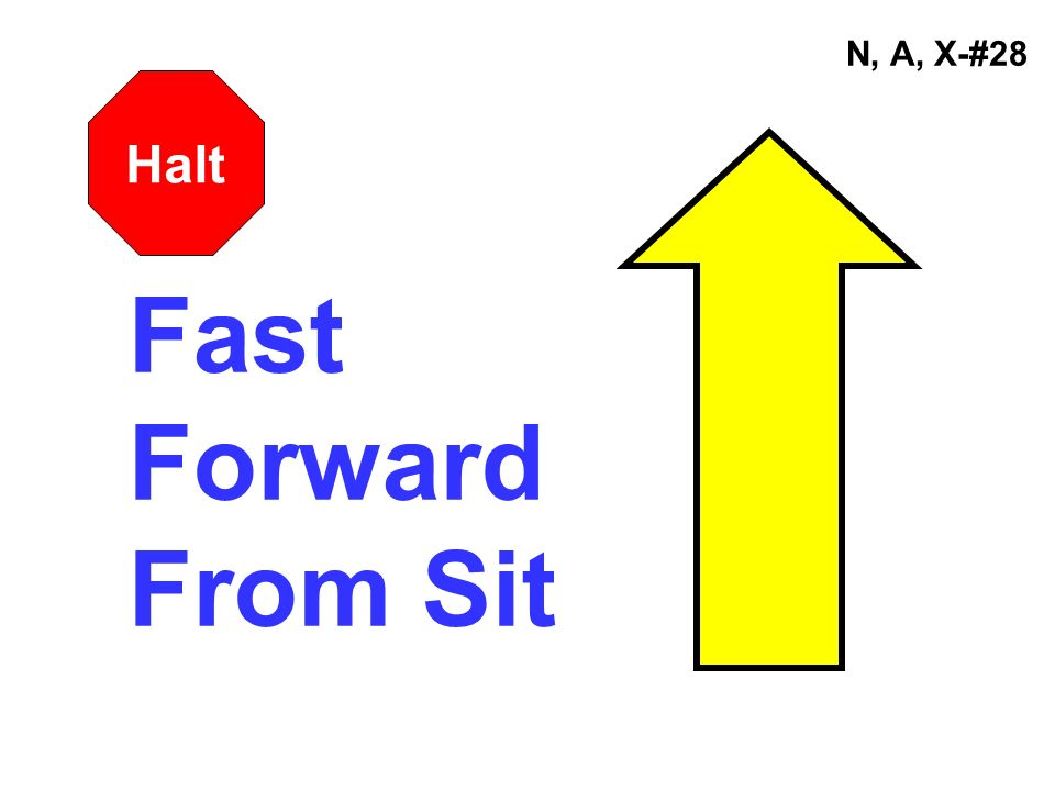 N, A, X-#28 Halt Fast Forward From Sit