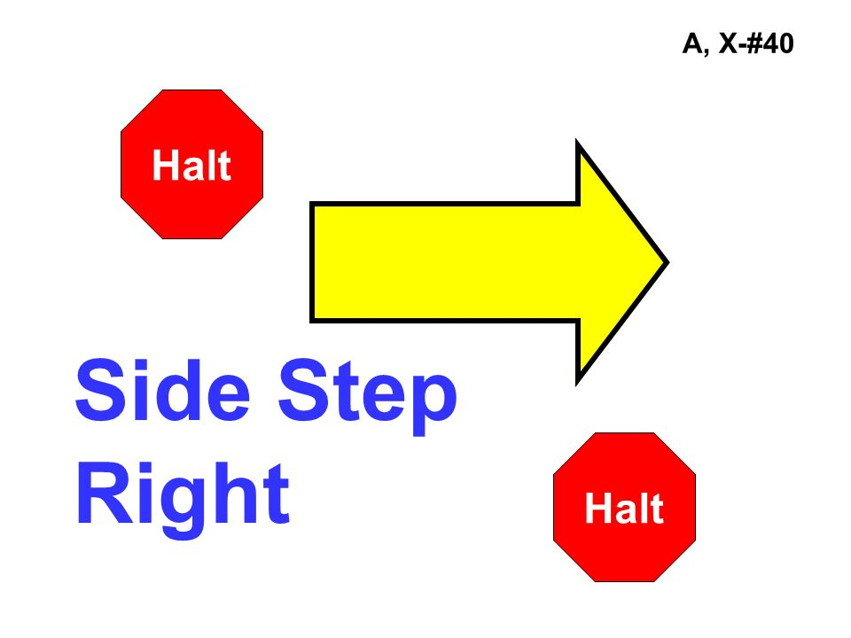 A, X-#40 Halt Side Step Right Halt