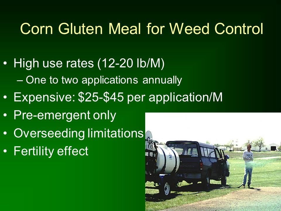 Corn Gluten Meal for Weed Control