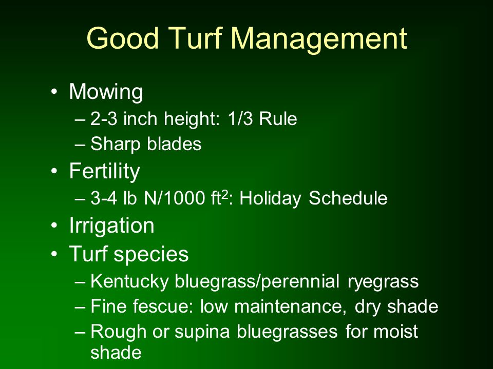 Good Turf Management Mowing Fertility Irrigation Turf species