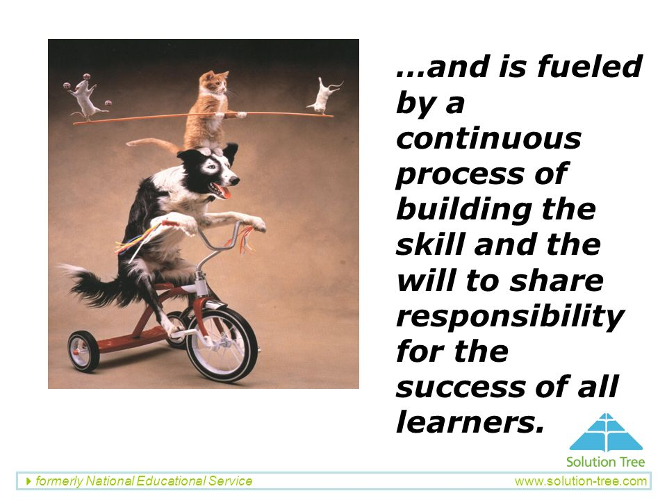 …and is fueled by a continuous process of building the skill and the will to share responsibility for the success of all learners.