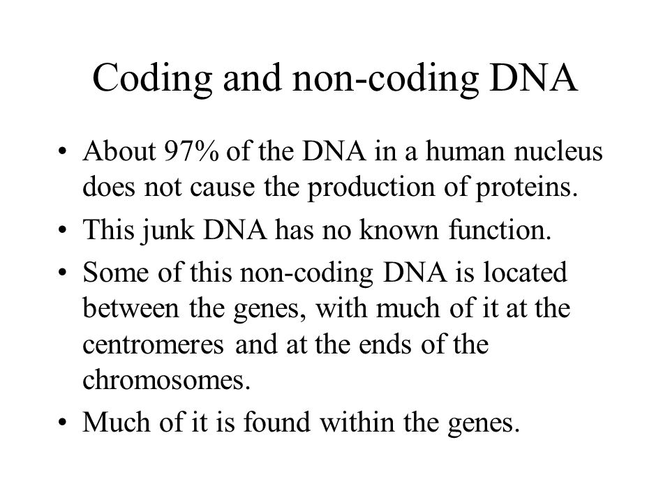 Coding and non-coding DNA