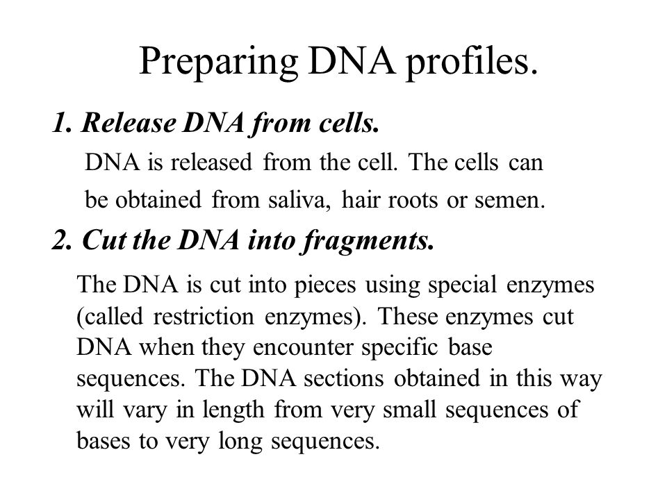 Preparing DNA profiles.