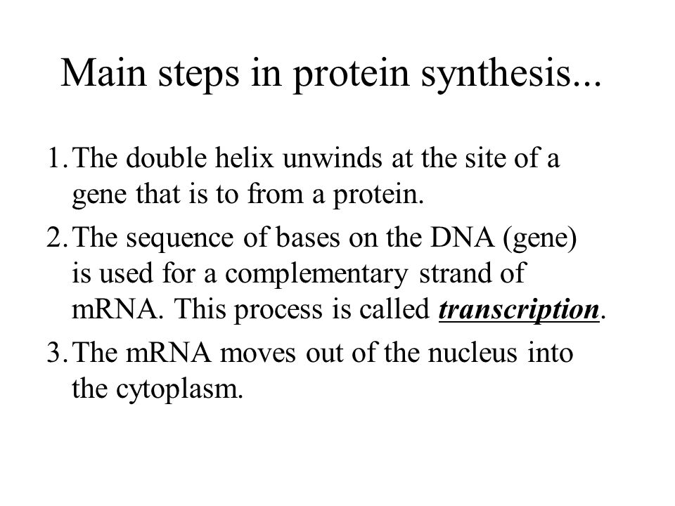 Main steps in protein synthesis...