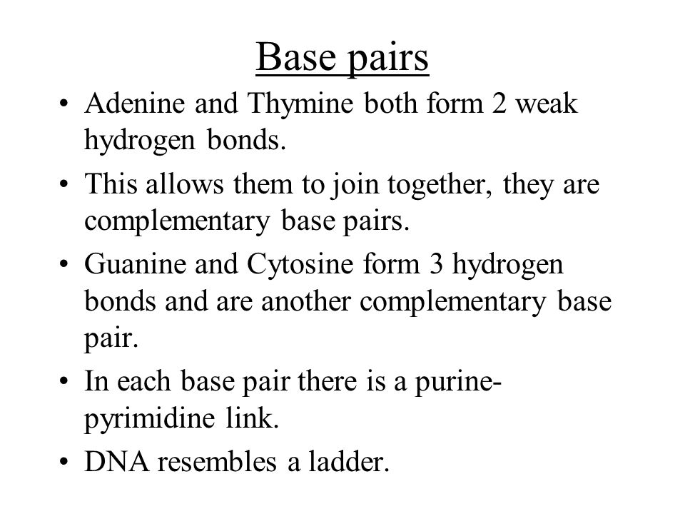 Base pairs Adenine and Thymine both form 2 weak hydrogen bonds.