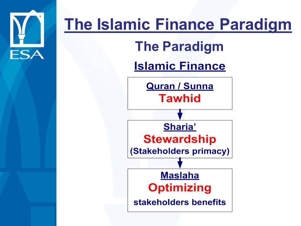 The Islamic Finance Paradigm
