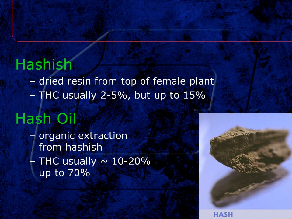 Hashish Hash Oil dried resin from top of female plant