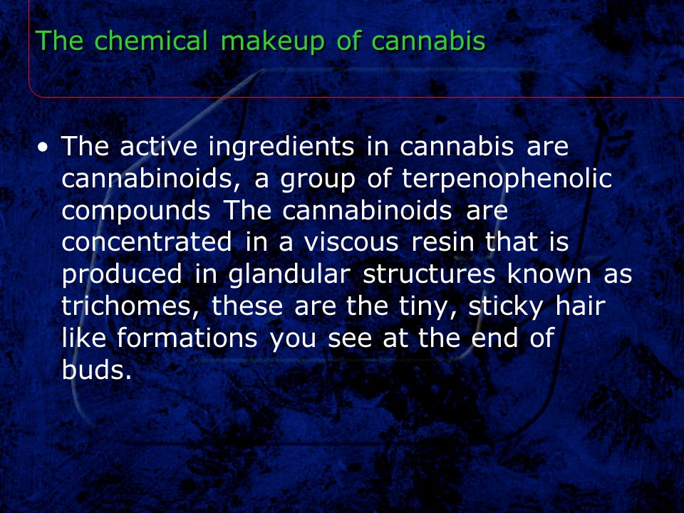 The chemical makeup of cannabis
