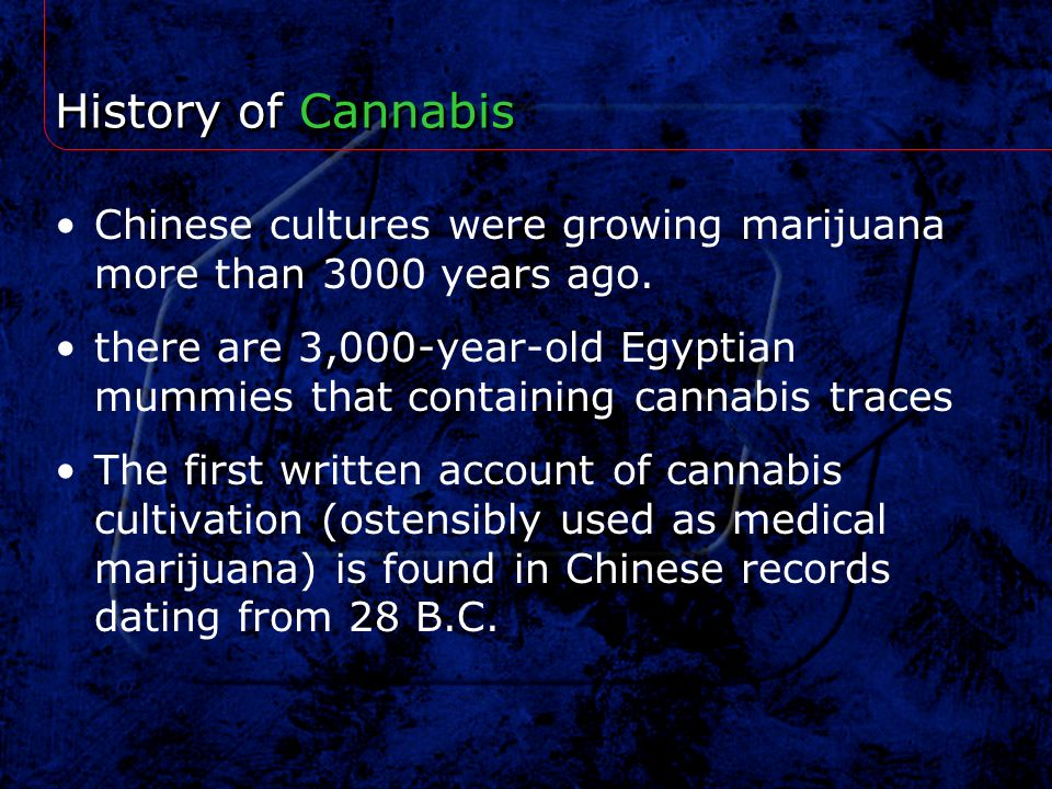 History of Cannabis Chinese cultures were growing marijuana more than 3000 years ago.