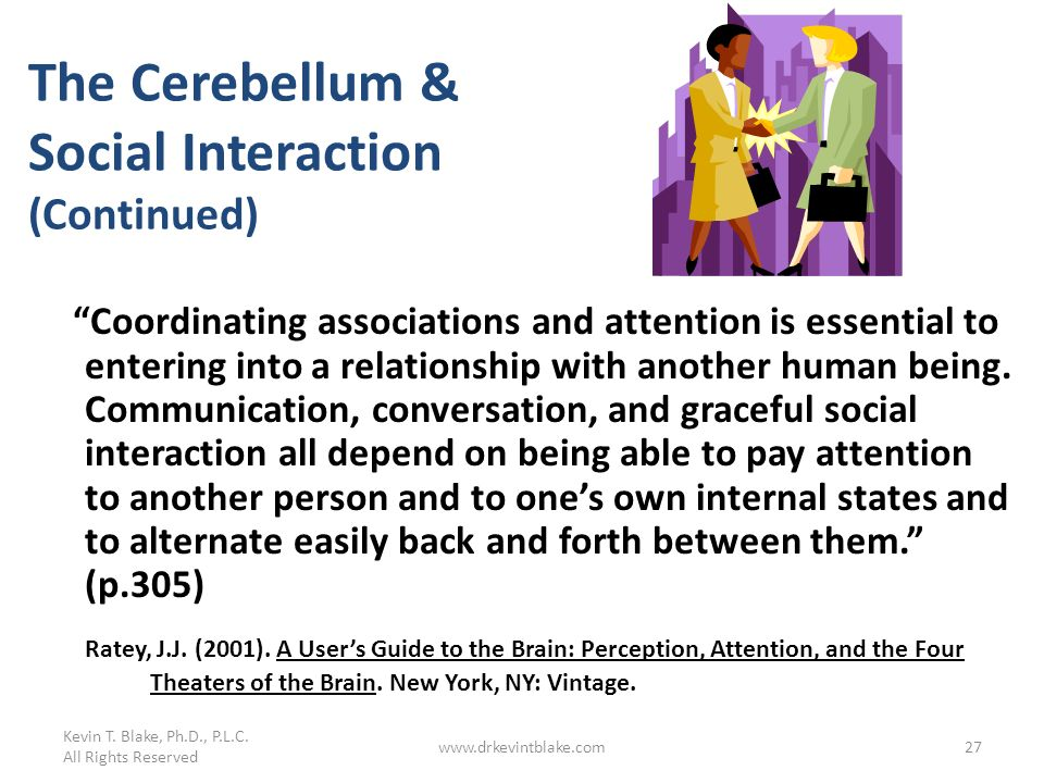 The Cerebellum & Social Interaction (Continued)