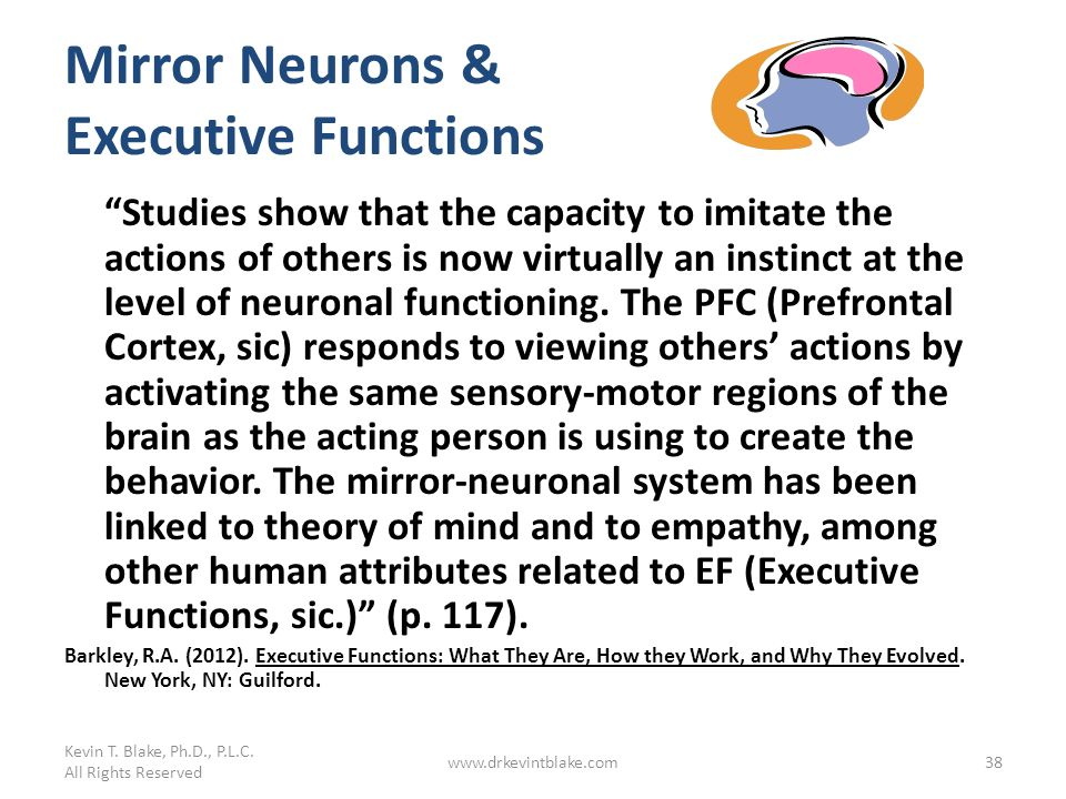 Mirror Neurons & Executive Functions