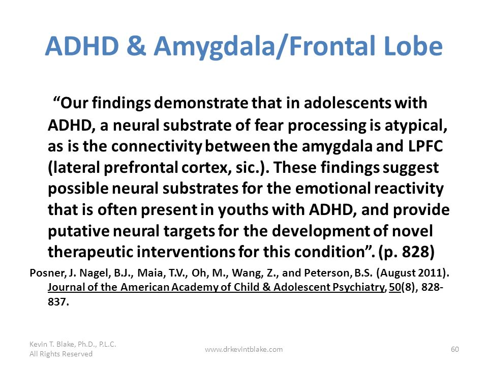 ADHD & Amygdala/Frontal Lobe