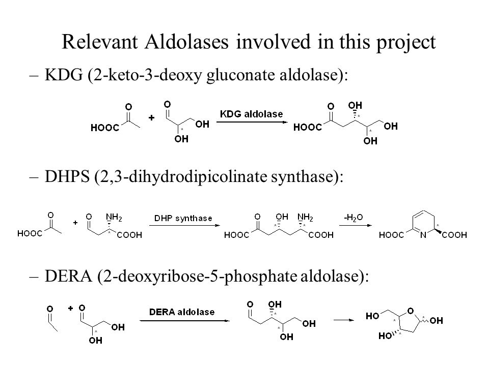 Relevant Aldolases involved in this project