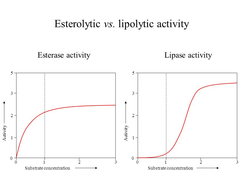 Esterolytic vs. lipolytic activity