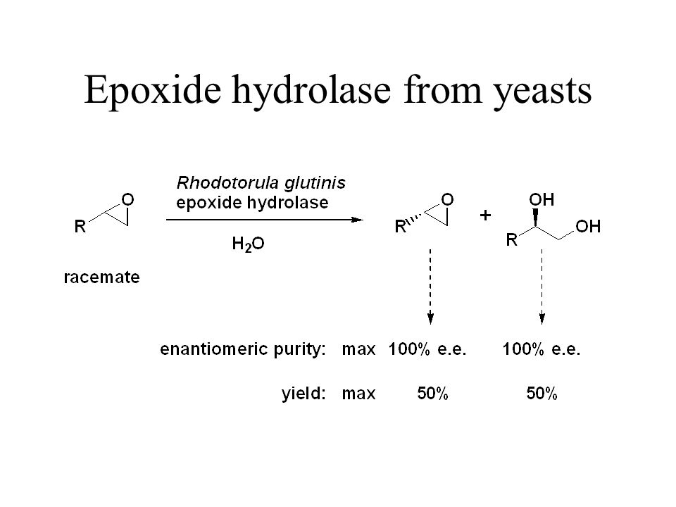 Epoxide hydrolase from yeasts