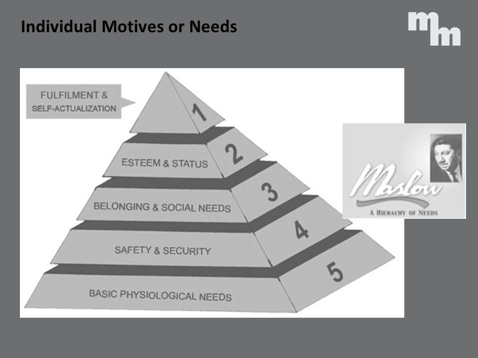 Individual Motives or Needs