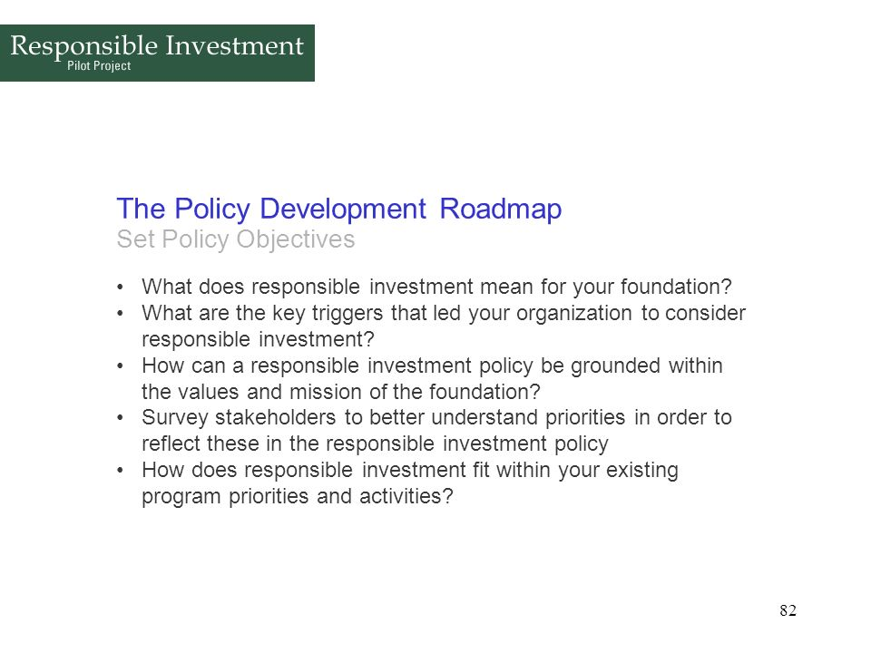 The Policy Development Roadmap