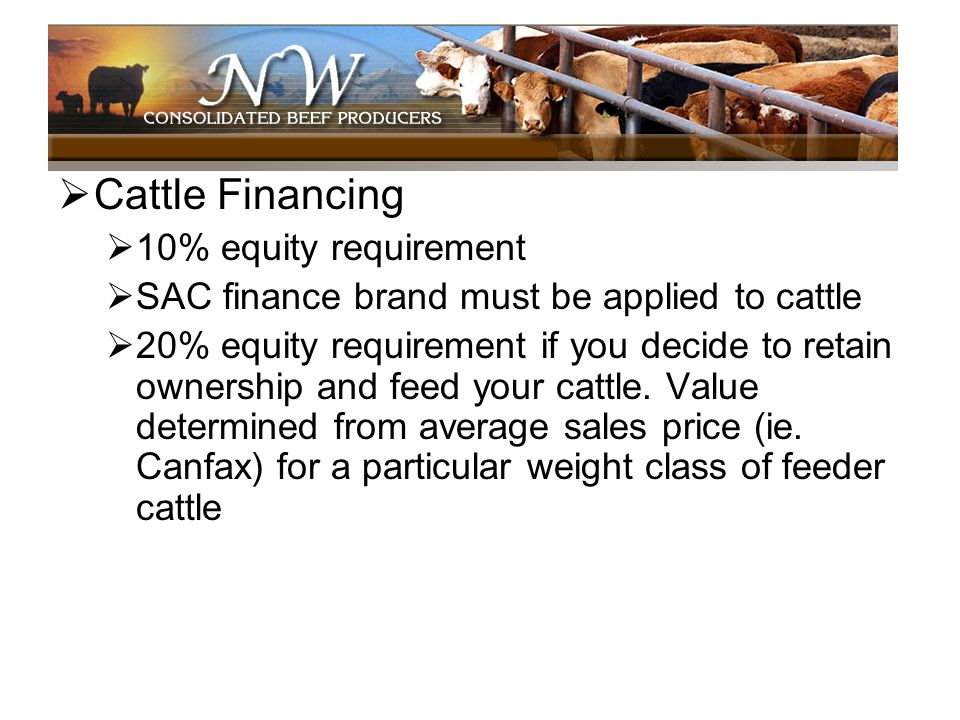 Cattle Financing 10% equity requirement