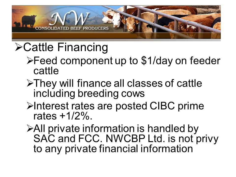 Cattle Financing Feed component up to $1/day on feeder cattle