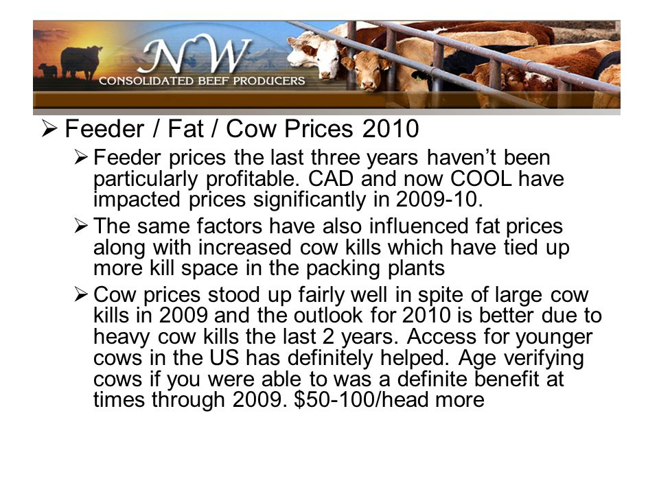 Feeder / Fat / Cow Prices 2010