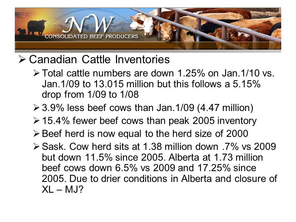 Canadian Cattle Inventories