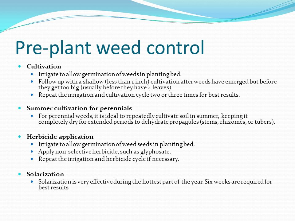 Pre-plant weed control