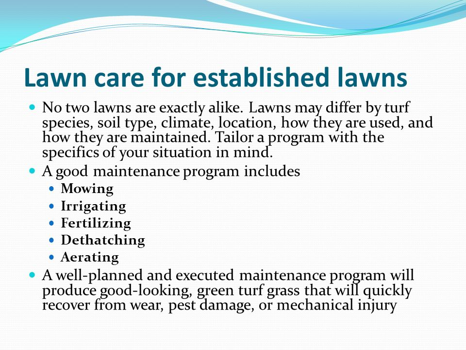 Lawn care for established lawns