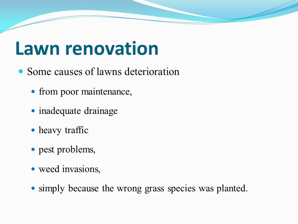 Lawn renovation Some causes of lawns deterioration