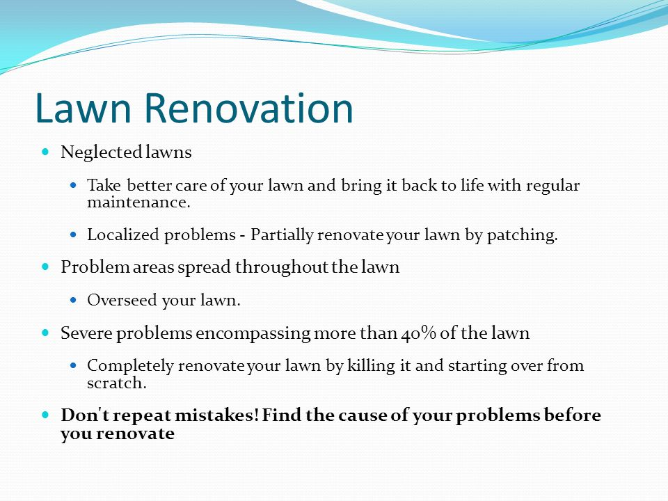 Lawn Renovation Neglected lawns