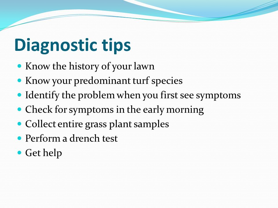Diagnostic tips Know the history of your lawn